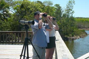 Tour di mezza giornata di birdwatching