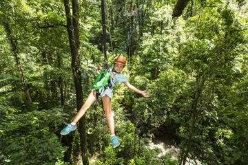 Best of Roatan Zip Line adventure plus Island tour