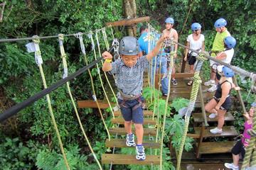 Chapuzón desde tirolina, playas y Parque de los monos en Roatán