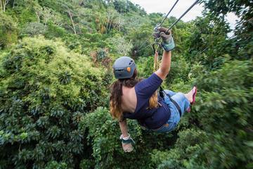 Zipline and Hiking Adventure in Roatan