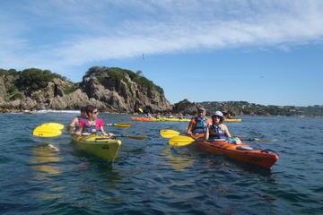 Kayak tour framed for the day