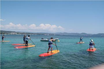 Stand Up Paddle Board Rental in La Ciotat