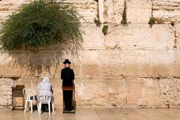 Tour privato di Gerusalemme e Betlemme: tour di mezza giornata a