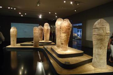 Tour privato: museo d'Israele e storia dell'arte e della cultura