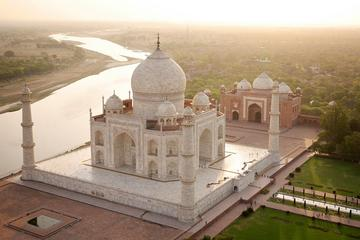 Taj Tigers and Majestic Forts Multi-Day Tour from Delhi