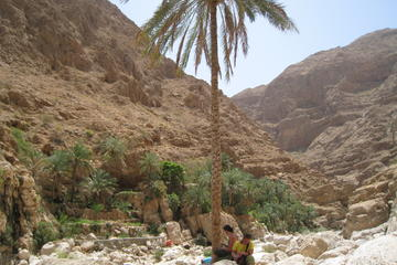 Private or Group Full Day 4X4 Tour Wadi Shab and the East Coast From...