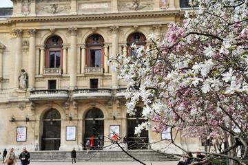 Private Tour: 3-Hour Food Tour of Lyon
