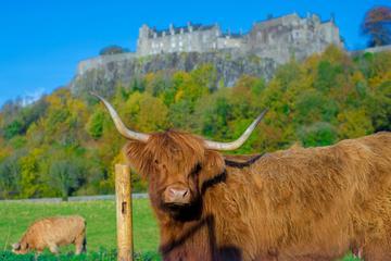 Stirling Castle,Trossachs National...
