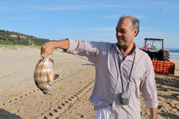 Ganztägige Tour ab Lissabon mit traditionellem Mittagessen in Setúbal