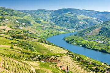 Excursão semiparticular: Região vinícola do Vale do Douro
