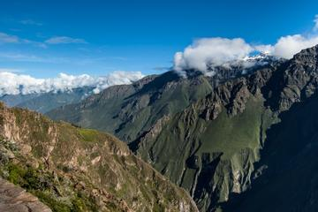 Excursión de un día al Cañón del Colca desde Arequipa
