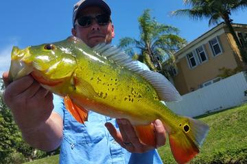 Peacock Bass All Day Fishing Trip near Palm Beach