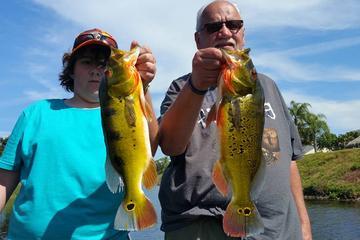 Sortie de pêche au bar de 6heures près de Boca Raton