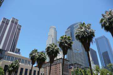 Stadtbesichtigung von Los Angeles in kleiner Gruppe mit deutschem...