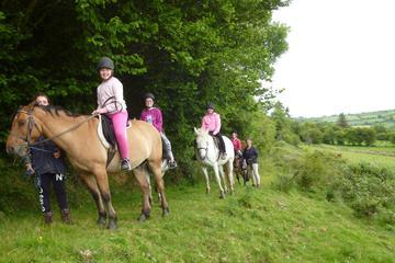 Scenic 1-Hour Horseback Ride Through...