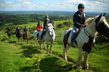 Scenic Horseback Riding Tour through Unspoiled Mountain Pastures of Tipperary