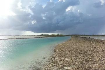 Trasporto privato nella natura a Nassau