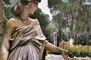 Book Bonaventure Cemetery Tours on Viator