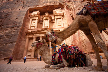 Best of Jordan Tour Lawrence of Arabia Petra and Dead Sea with Wadi Rum 7 Days