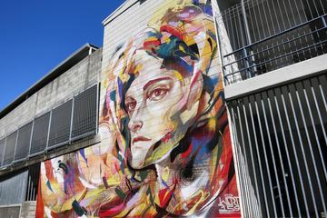 Rundgang: Straßenkunst von Auckland