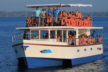 Croisière d'observation des baleines au départ de Galle