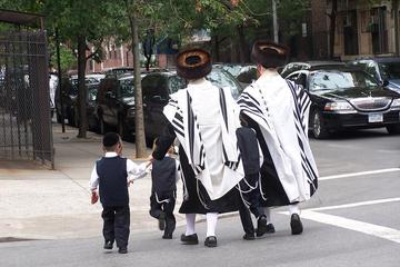 Recorrido Contrastes de Nueva York: Brooklyn, Queens y el Bronx