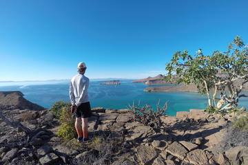 Exploración de la Isla Espíritu Santo...