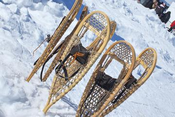 Yellowknife Snowshoeing Tour