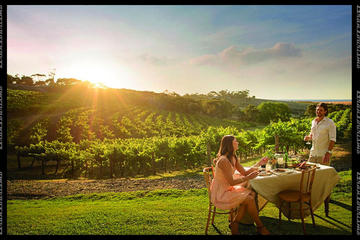 Private Swan Valley Tours by Luxury Vehicle from Perth