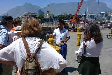 V & A Waterfront Historical Guided...