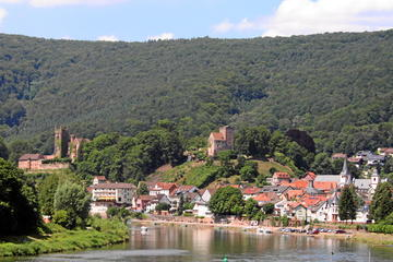 Half-day excursion from Heidelberg