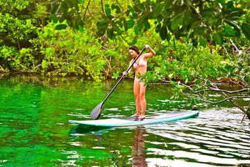 Stand Up Paddleboard and Snorkeling Tour in Tulum