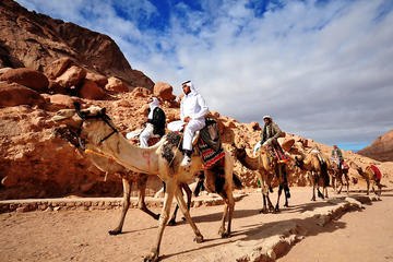 3-Day 2-Night Camel Safari to Wadi Rum from Dahab
