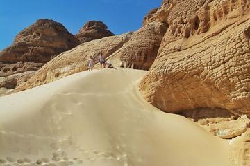 Full Day Sand Dunes Safari from Dahab