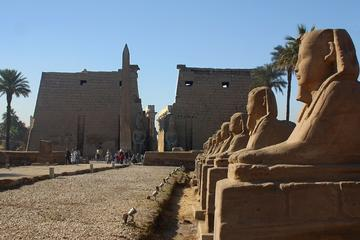 Luxor by Plane One Day Tour from Dahab