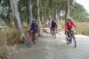点心ランチ付き半日香港サイクリング ツアー