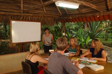 1- or 2-Week Spanish Immersion Program in Tamarindo
