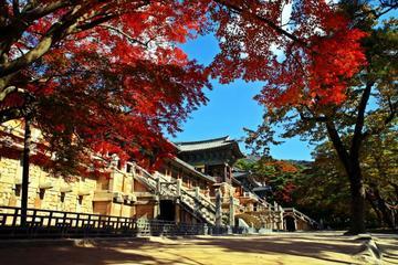 韓国発見:ソウルや釜山などを巡る東韓国4日間