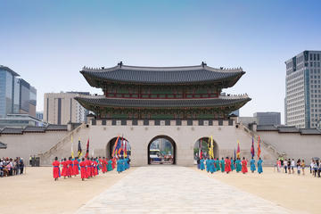 Korea Stopover Tour - Seoul Sightseeing and Shopping Tour including...