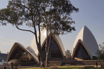 Exclusive Sydney Grand Walking Tour