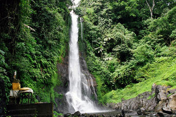 Private Full-Day West Bali Tour with...