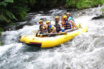 Telaga Waja River White-Water Rafting with Buffet Lunch