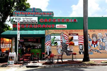 Visite des attractions touristiques de la ville de Miami avec service...