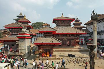 Excursão de dia inteiro particular incluindo o Templo Pashupatinath e...