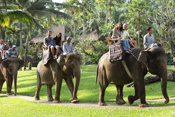 Bali Elephant Safari Park with Buffet Lunch