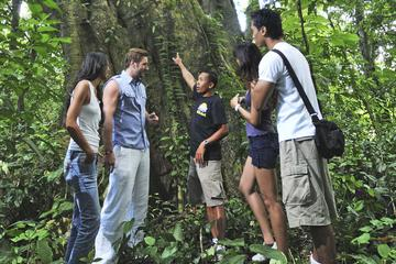 Full-Day Trekking Tour with Taro and Tegalalang from Ubud