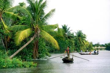 Excursion d'une journée, du delta du Mékong à My Tho, avec croisière...