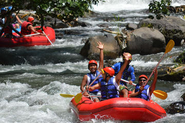 Bali Shore Excursion: White Water Rafting and Coffee Plantation or Agro Tourism Visit