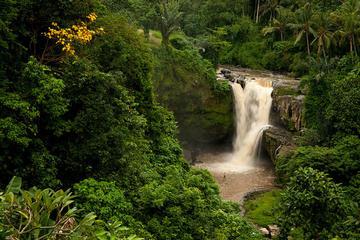 Bali Tegenungan Waterfall, Temple...