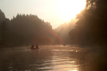 Early Morning Canoe Safari